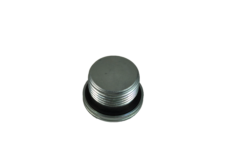 Blanking Plug (BSP)